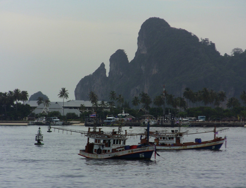 A view of the main Phi Phi Harbor