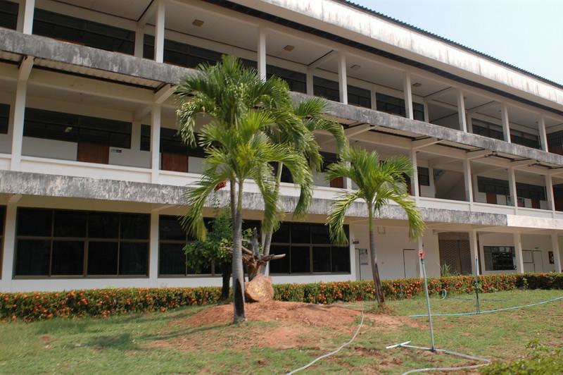 More of her school