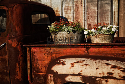Color of Rust - Flowers in the Truck