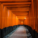 Thousands of torii line the paths of Kyoto's Fushimi Inari shrine.