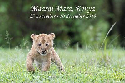 Maasai Mara, Kenya 2019