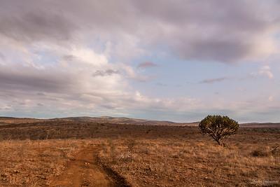 Zimanga landscape