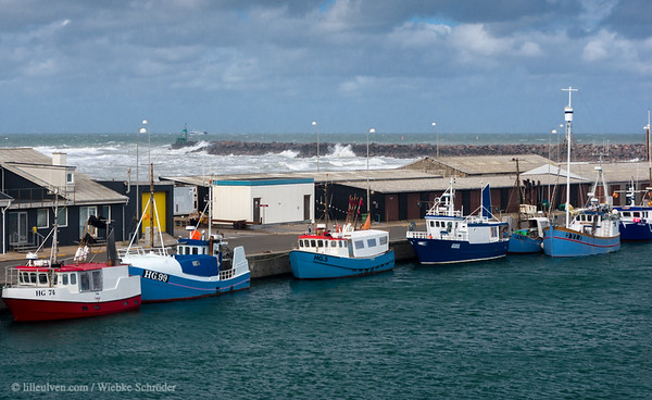 Hirtshals harbor and the northsea in the background