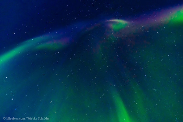 Aurora Borealis over Henningsvær, Norway - Welcome January 2021 with natural fireworks