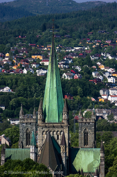 Nidarosdom in Trondheim from the old fortress