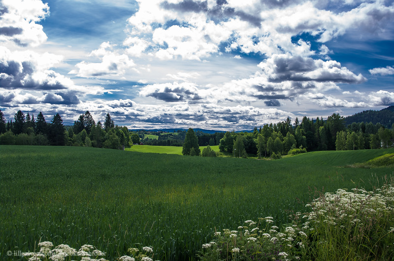 The fields of Buskerud