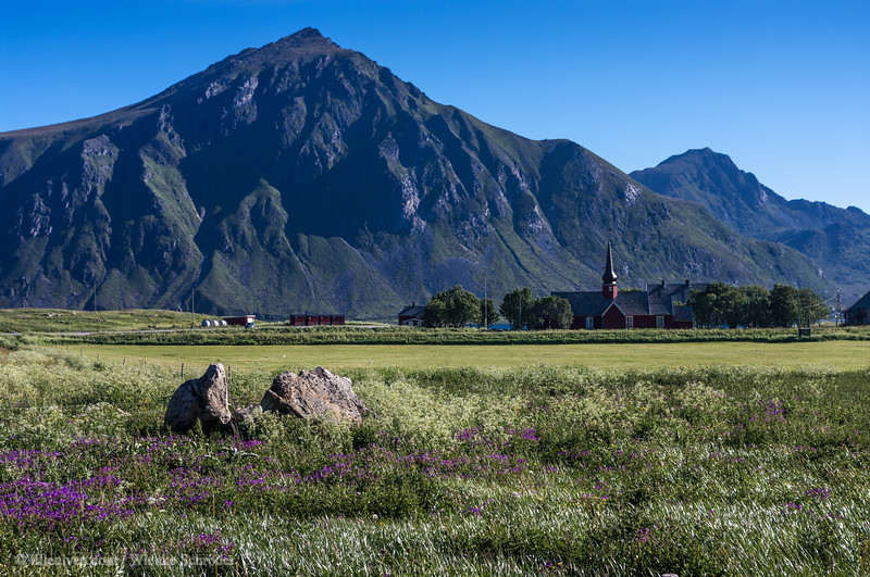 The church of Flakstad in the background behind a colorful field. This photo is published in Lille Ulven Photography's Lofoten calendars.