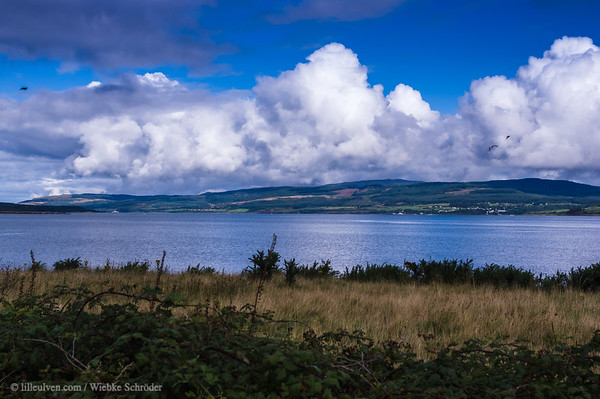Looking over the Sound of Mull from Scallastle