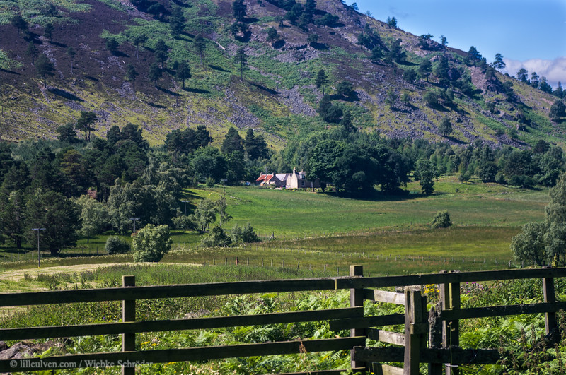 Fields of Ballater