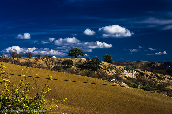 The hills and fields of Antequera