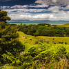 Orere Point Auckland New Zealand coastline