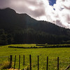The mountains of Te Aroha