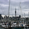Auckland harbor