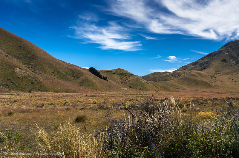 Fields of Lindis Pass