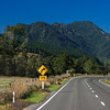 St. Arnaud-Kawatiri Highway near Howard