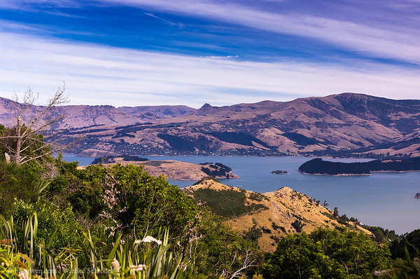 Overlooking Christchurch from Mount Pleasant Scenic Reserve