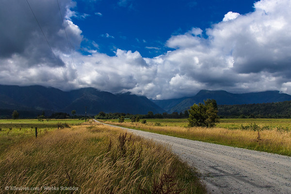 Road to Franz Josef, near Harihari