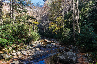 River Prong on the Chimney Tops Trail, Great Smoky Mountains National Park
