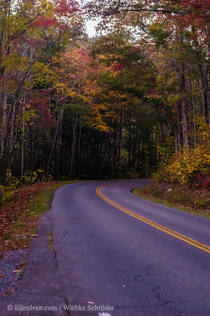 Fall colors along the Little River Gorge Road