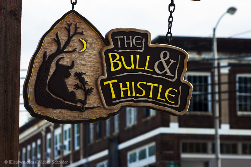Gainsboro - The Bull & Thistle