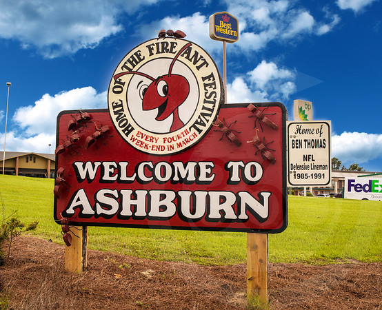 Ashburn_Fire Ant Festival Sign_2318
