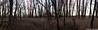 IMG_7500 Panorama