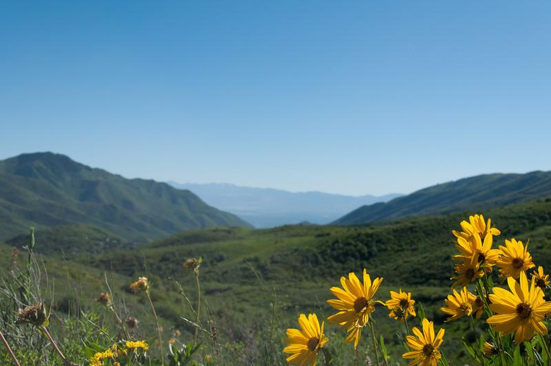 Pipeline Trail, Utah<br /> best print size - 8x12 or 12x18