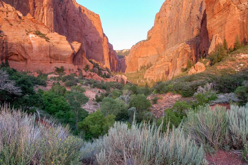 Kolob Canyon<br /> best print size - 8x12 or 12x18