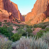 Kolob Canyon<br /> best print size - 8x12 or 12x18
