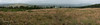 IMG_6633 Panorama