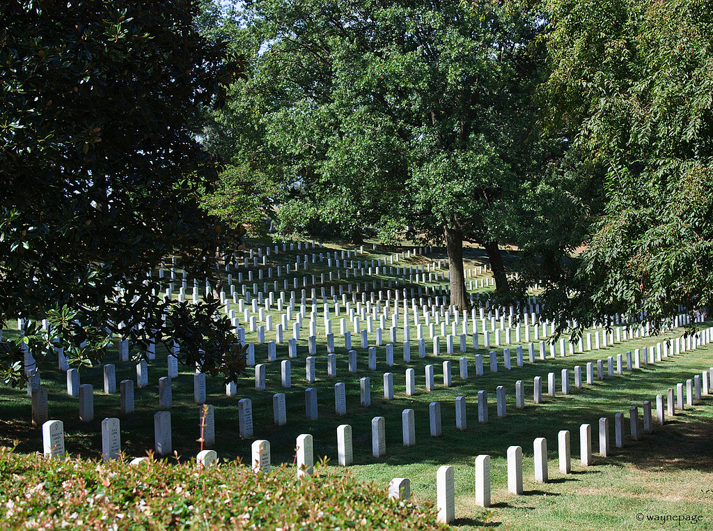 Arlington 1