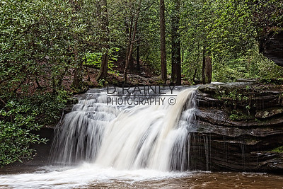 Carrick Creek, Table Rock State Park, Pickens SC