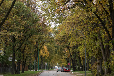 Winnipeg in Autumn
