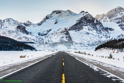 Choose Your Own Road