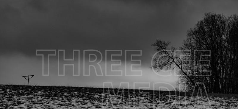 grey fields
