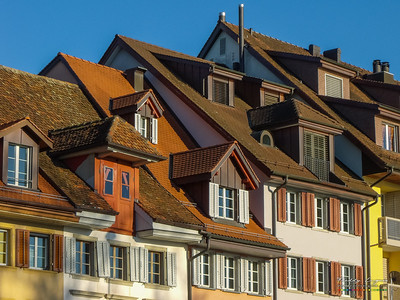 Scale roofs