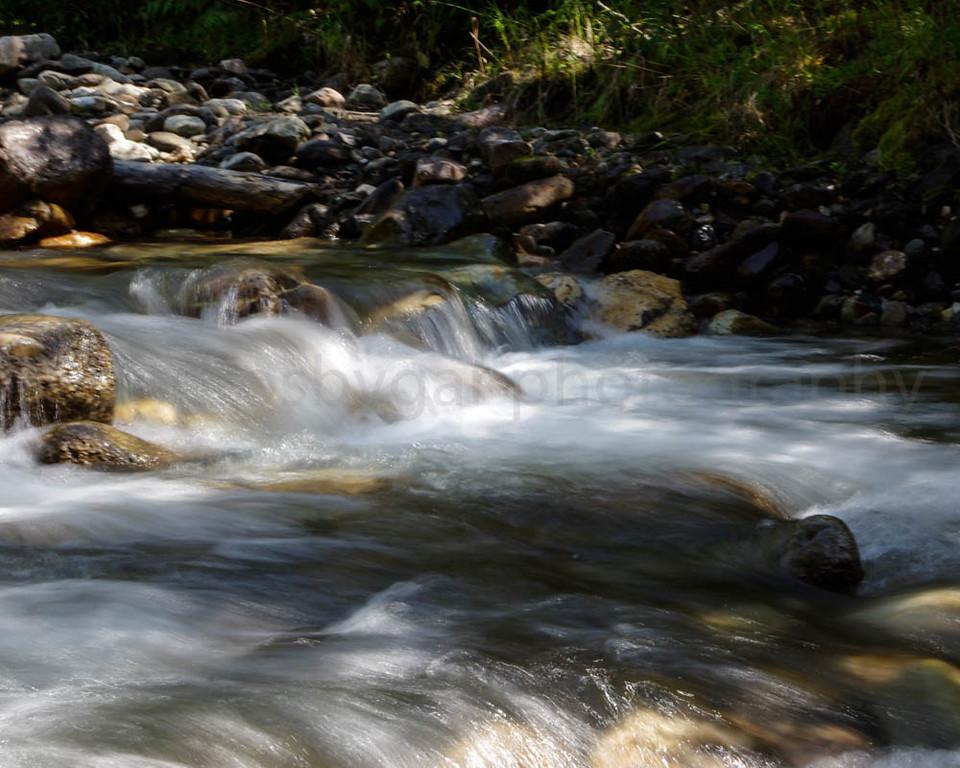 LaFrance Creek 2