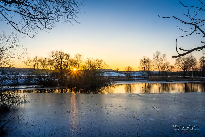 Lake of Ducks