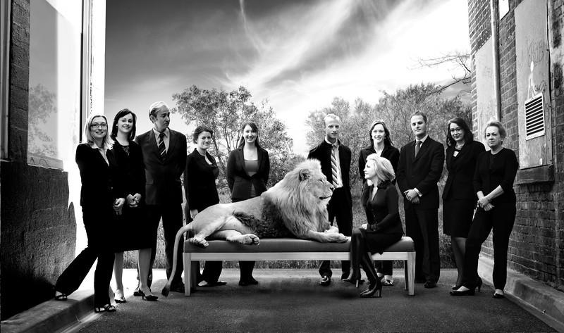 Final Lion copy