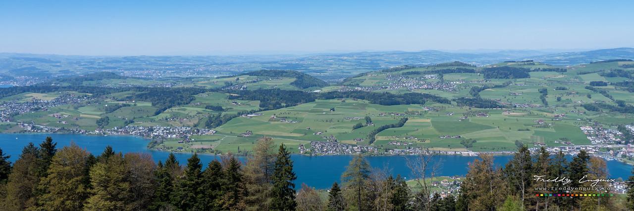 Swiss fields