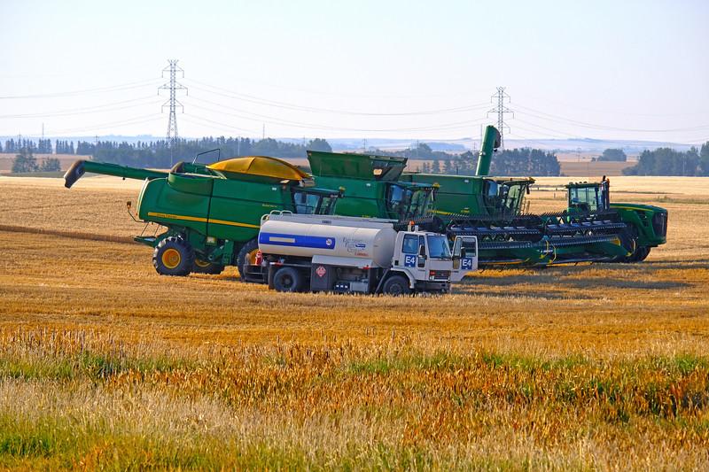 The Harvest Brigade