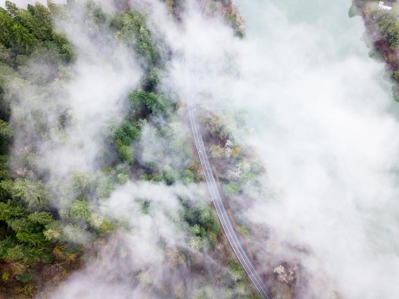 Umpqua Highway