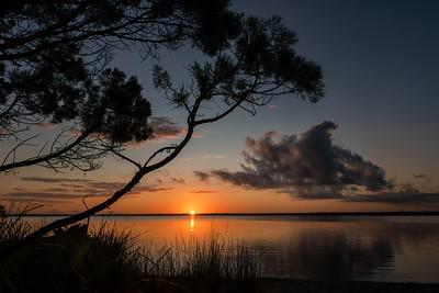Sunrise, Lake Cootheraba