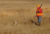Pheasant Hunter and His Dog