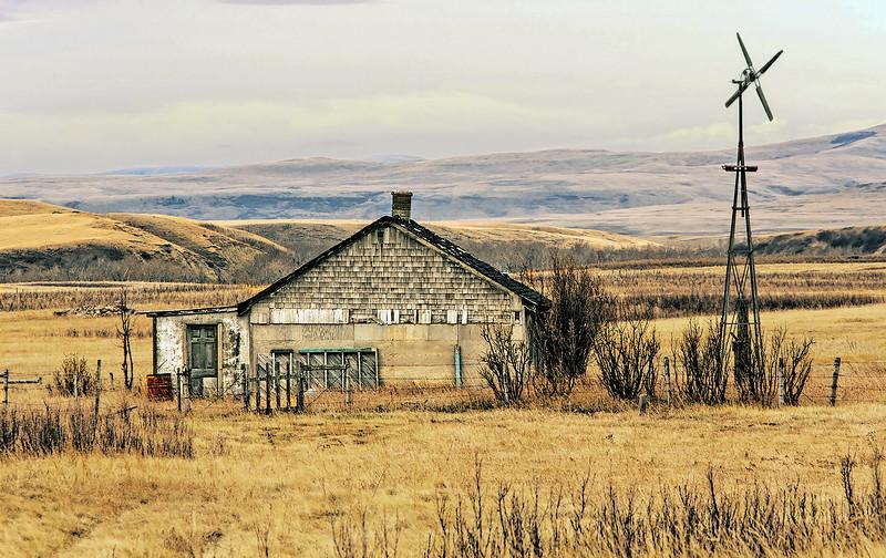 The Wind Farm