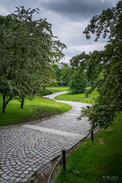 Rain path