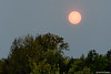 Saharazand en Portugese bosbranden doen zon blozen