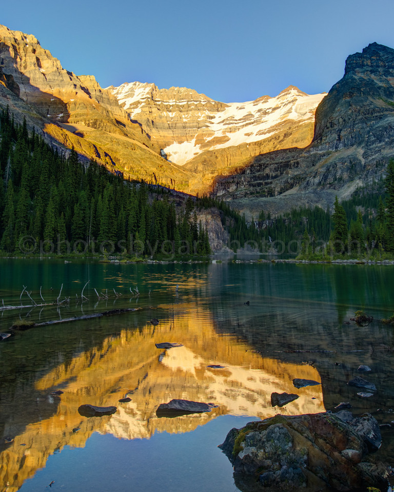 Lake O'Hara Evening