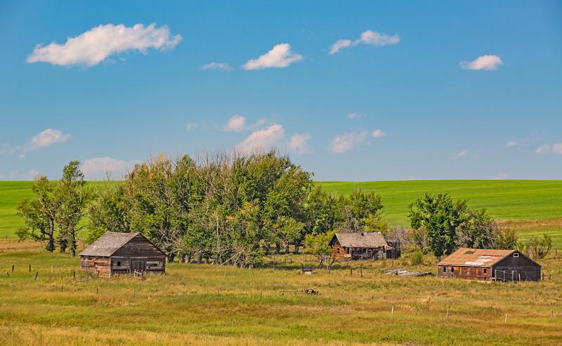 Forgotten Farmstead