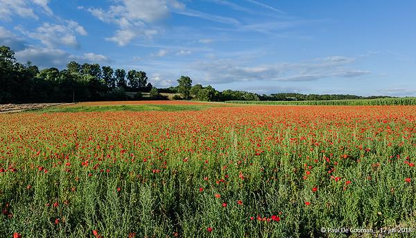 Herdenking 100 jaar Groote Oorlog